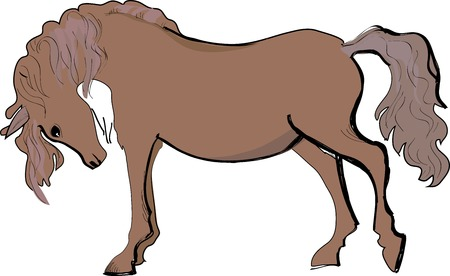 Artistic sketch of brown horse  Vector illustration Vector