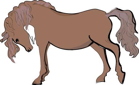 brown horse: Artistic sketch of brown horse  Vector illustration Illustration