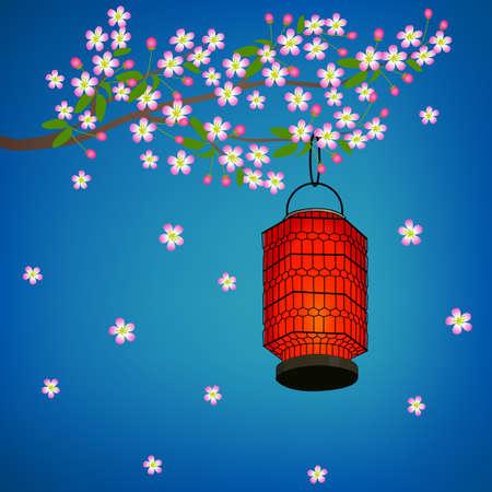 Chinese lantern on a flowering branch of Sakura at night