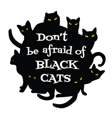 don't: Poster Dont Be Afraid of Black Cats