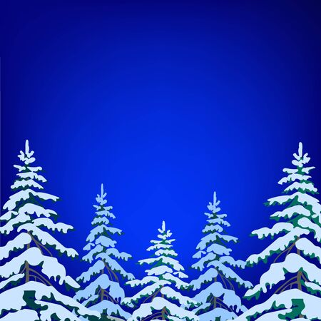snow landscape: Snow-covered fir on the background of night sky