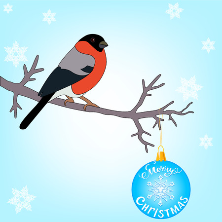 bullfinch: bullfinch sitting on a branch decorated with Christmas ball