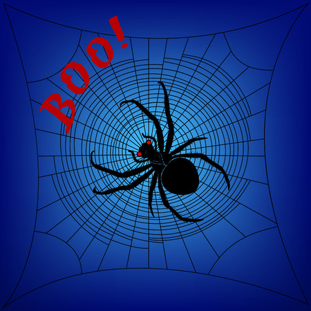 cobweb: Spider on cobweb on a dark blue background Illustration