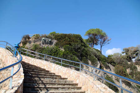 stairway to the blue sky in the rocks with green pine trees. stairs up against blue sky