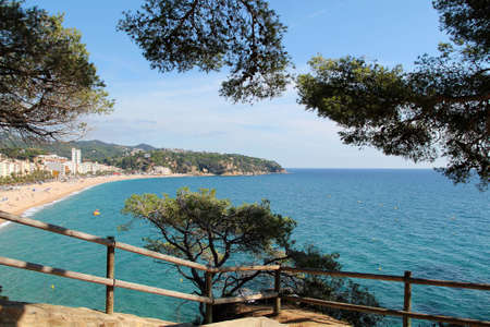 view of the sea and beach resort through green pine trees. Beautiful sea landscape with blue sky and sun. summer day. Mediterranean Sea.