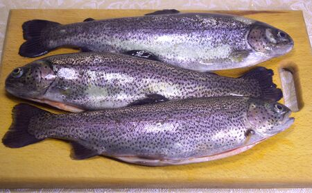 Freshly cleaned fish. Rainbow trout. Forel.