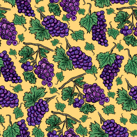 grapes bunches contour colored hand drawn vector seamless pattern on yellow background design for wine label