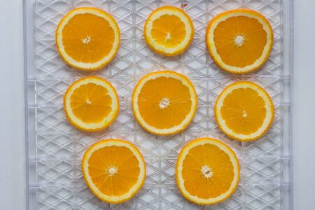 Cutted orange on dehydrator grid on white background