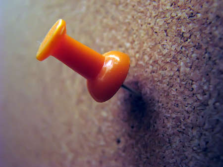 corkwood: Orange plastic pushpin on brown corkwood board. Stock Photo