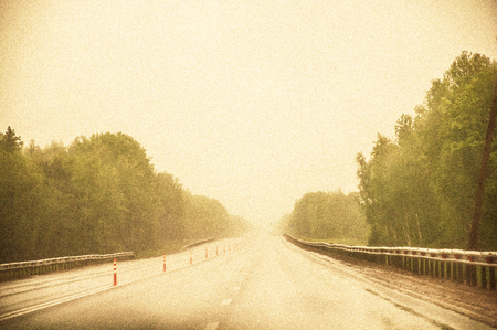 A highway with strong fog. Trees growing around the road. Film grain and tone effects.