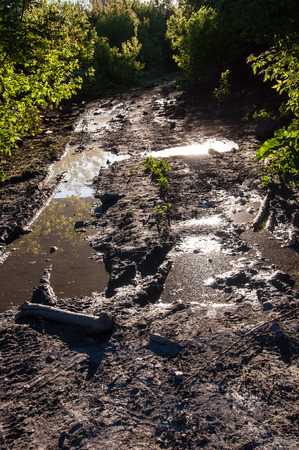 A vertical view at the dirty countryside road in the forest with big puddles Stock Photo