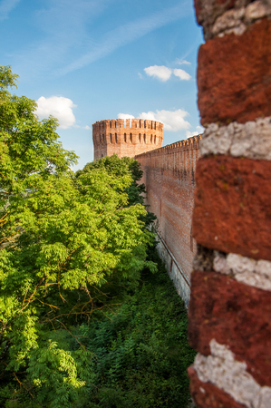 A vertical view at the Orel tower of the Smolensk Fortress with blurred bricks on the foreground