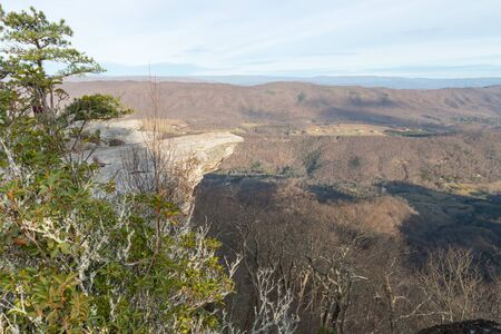 Trees on a cliff on the background of Appalachian mountains on sunrise in autumn