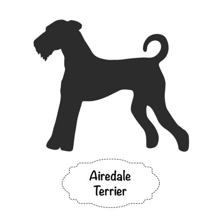 Vector isolated silhouette of Airedale Terrier dog on white background.
