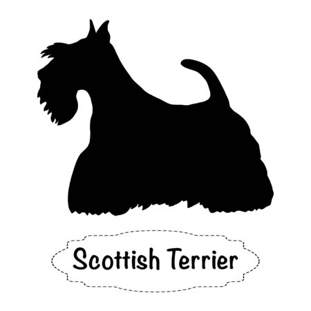 Vector isolated silhouette of scottish terrier dog on white background. Vectores