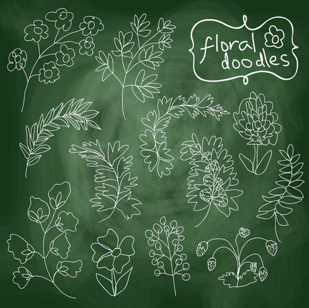 botanica: Flowers and plants set on chalkboard background. In the style of childrens hand-drawing.Outline different branches and flowers.Stylized drawing with chalk.Vector cartoon illustration