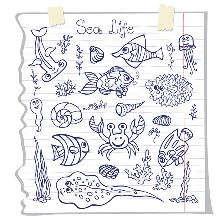 Funny Sea Life and Fish Doodle set on school notebook Vector