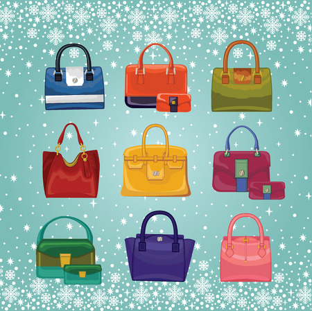 leather goods: Coloured fashion womens handbags.Winter background