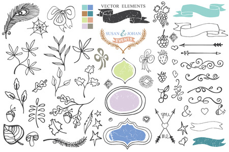 Doodle brunches,budges,ribbons,decor element Vector