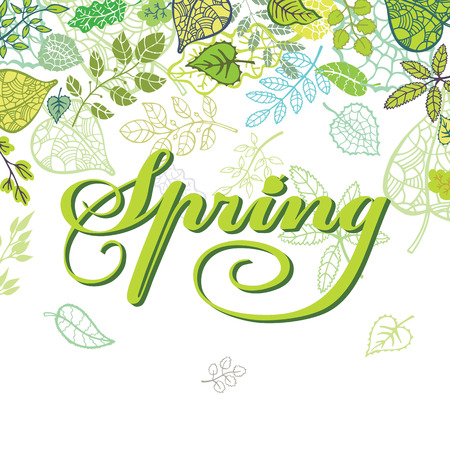 spring background': Spring composition. Leaves,branches.Seasonal background