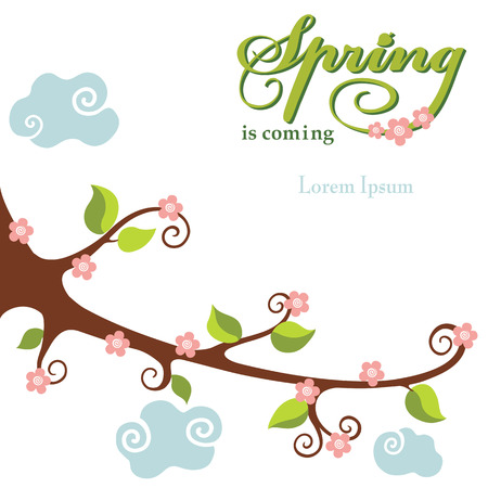 flowering: Spring  flowering branch background
