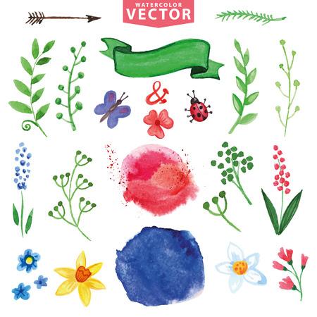 Watercolor floral decor, branches,flowers set