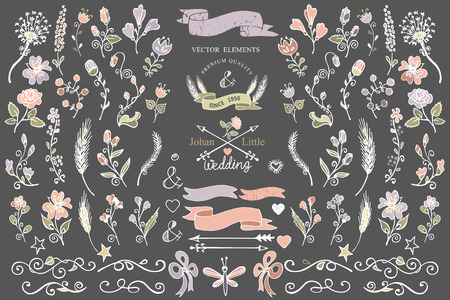 Colored Doodles borders floral decor elements set