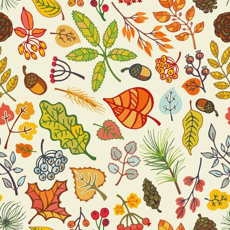 fall harvest: Autumn seamless pattern.Colored leaves ,berries,pine branches,spruce cones and acorns.Fall wood harwest.Vector background.Natural Bright colors.For wrap,textille,wallpaper backdrop illustration.