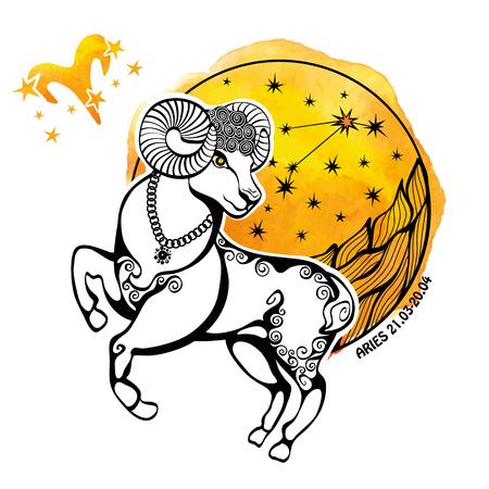 양자리 조디악 로그인 .Horoscope 별자리는 animal.Artistic 벡터 일러스트 레이 션 램, 원 composition.Watercolor 스타, 핸드 페인팅 spot.White background.Symbol, fire.Sheep