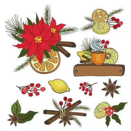 Kerstmis, Nieuwjaar, Winter seizoen doodles composities met citrus en specerijen. Sparrentakken, Poinsettia-bloemen, hete, smakelijke achtergrond Vlakke vector, vakantiedecoratie, heldere kleuren