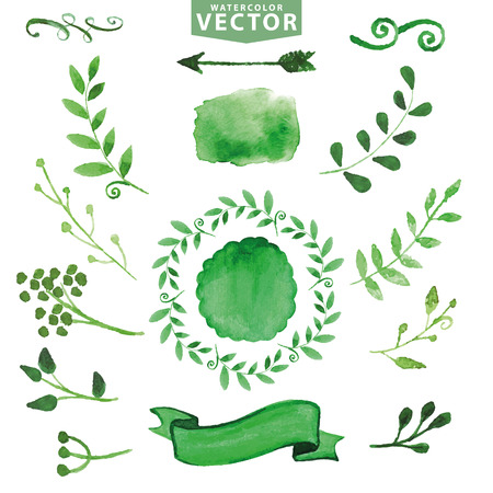 Watercolor green decor,branches.Floral set