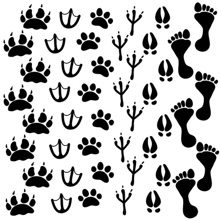 People and pets footsteps Vector