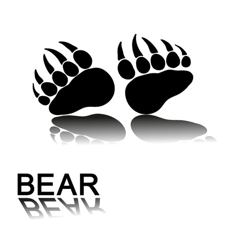 prints: bear paw prints