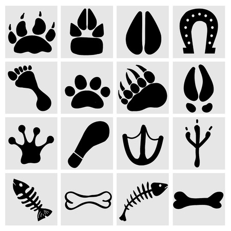 footsteps: People and pets footsteps