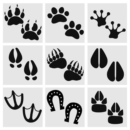 silueta humana: Las huellas de animales, aves, personas