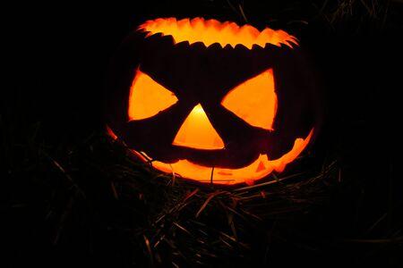 Halloween pumpkin head jack lantern on dark grass background Banco de Imagens