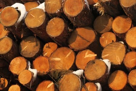 Background of dry chopped firewood logs stacked up on top of each other in a pile Stok Fotoğraf