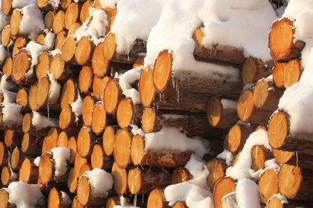 Background of dry chopped firewood logs stacked up on top of each other in a pile with a snow on the tops Stok Fotoğraf