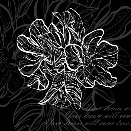 Retro black floral on white background for card hand drawing  Vector