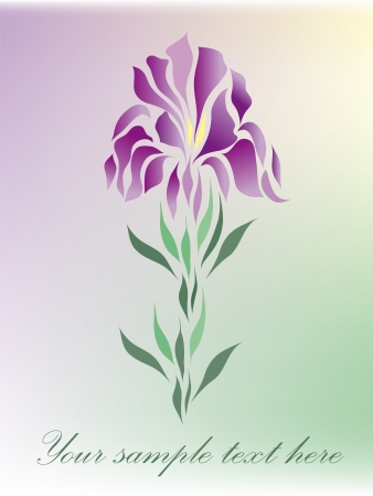 Vintage iris vector hand drawing isolated on pastel background with your text  eps 10   Vector