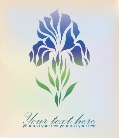 Vintage iris hand drawing isolated on pastel background with your text Vector