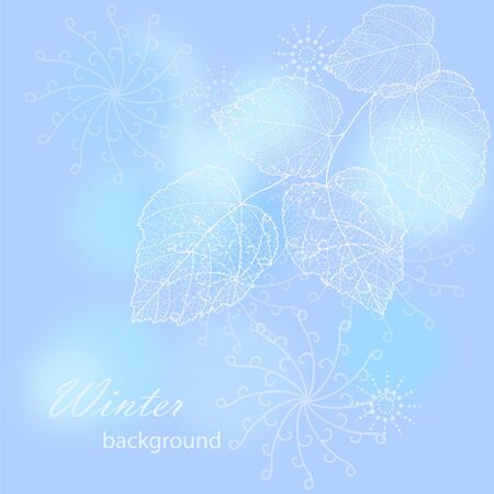 flower background with your text    Vector
