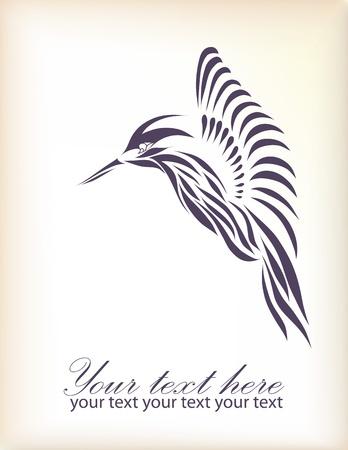 humming: Beautiful black hummingbird isolated on white background  Illustration
