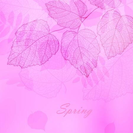 Wedding romantic spring background with your text for card, wallpaper, texture, dwaign element, illustration, abstract image, template, backdrop  Vector