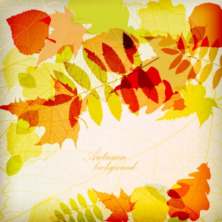 Nature background  Stock Vector - 14488528