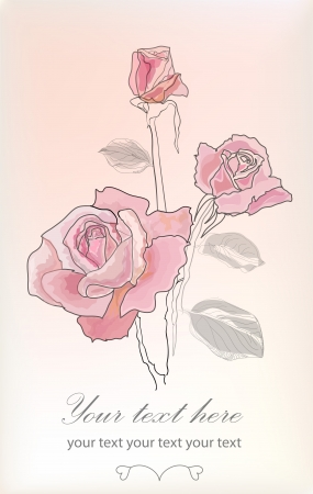 Hand drawing rose card  Vector