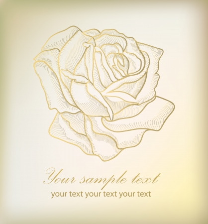 Hand drawing rose card with your text  Vector