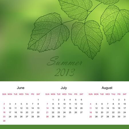 Summer season calendar page of new 2013 year  Vector