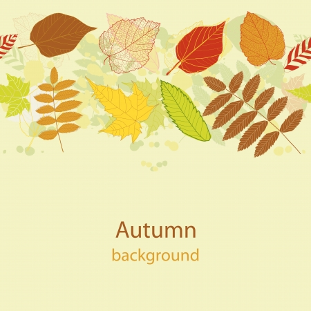 Autumnal Autumnal bright leaf seamless  Vector