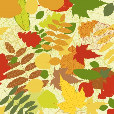 Autumnal bright leaf background  Stock Vector - 14875902